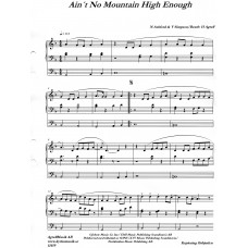 Ain´t No Mountain High Enough / N Ashford & V Simpson