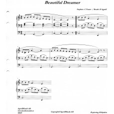 Beautiful dreamer / Stephen C Foster