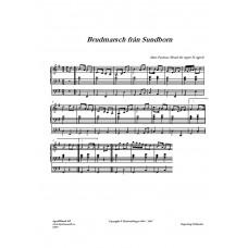 Brudmarsch från Sundborn /Mats Paulson
