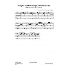 Drottningholmsmusiken förkortad-förenklad version /J H Roman
