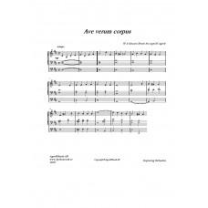 Ave verum corpus /W. A Mozart