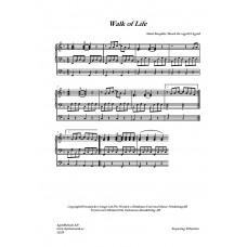 Walk of life /M Knopfler/Bearb för orgel:H Agrell